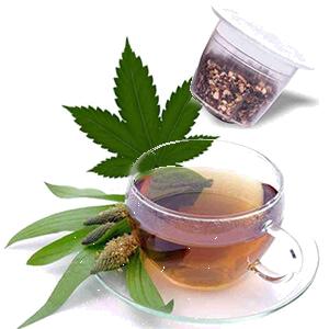 Tisane au cannabis – Dolce Vita, compatible Nespresso®